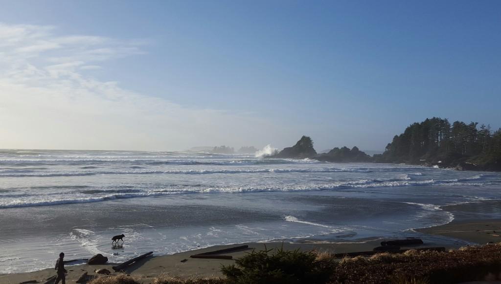 big wave blog