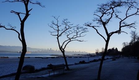 elayne trees