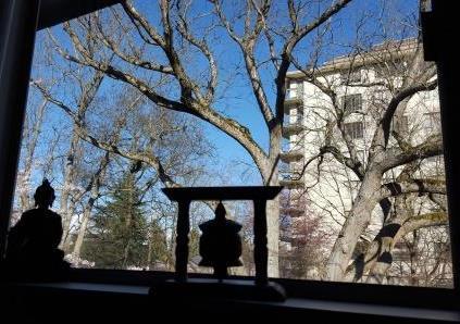meditation blog 3